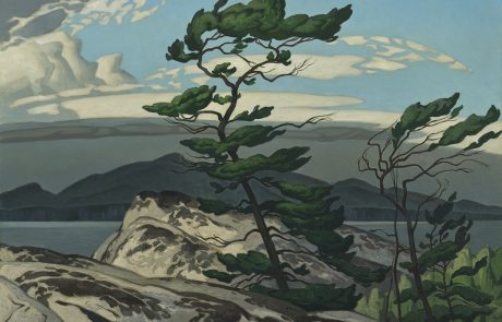 oil painting of a pine tree growing on rocks with water and rocks in distance