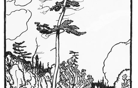 Black and white drawing of trees, dominated by a massive pine, in a rocky landscape with body of water in lower right.