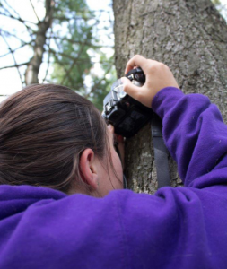 photograph of a girl with a camera taking picture of a tree